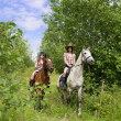 Girls ride horses in the park — Stock Photo
