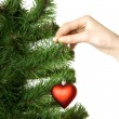 Hand hangs on New Year's pine decoration heart — Stockfoto