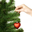 Hand hangs on New Year's pine decoration heart — Stock fotografie