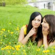 Girls who fissile secrets with each other - Stock Photo