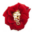Necklace on the petals of red roses — Foto Stock
