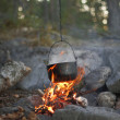 Stock Photo: Fire in the woods