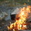 Fire in the woods - Stockfoto