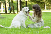 Fille avec le golden retriever dans le parc — Photo