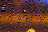 Drops and bokeh — Stock Photo