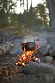 Fogo na floresta — Fotografia Stock