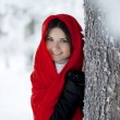 Beautiful girl in winter forest in red - Stock Photo