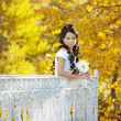 Beautiful bride in the autumn park — Stock Photo #7617586