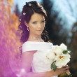 Beautiful bride in the autumn park - Stock Photo