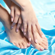 Beautiful manicured feet with a neat pedicure — Stok fotoğraf