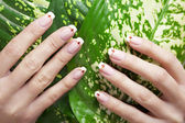 Beautiful hands with beautiful nails — Stock Photo