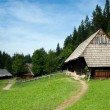Traditional Timber Houses with Wooden Roof — Stock Photo