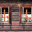 Two Traditional Opened Wodden Windows with Red Flowers — Stock Photo #7474506