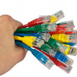 Hand Holding Bunch of Colored Network Cables Isolated — Stock fotografie