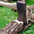 Royalty-Free Stock Photo: Wood Chopping - Lumberjack\'s Axe Stuck in a Tree