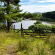 Forrest track with a gate overlooking beautiful lake — Stock Photo