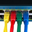 Stock Photo: Colored Network Cables Connected to Switch Isolated