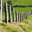 Royalty-Free Stock Photo: Wodden Posts with Metal Wire Fence in Cattle Field