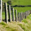 Stock Photo: Wodden Posts with Metal Wire Fence in Cattle Field