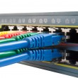 Multi Colored Network Cables Connected to Switch Isolated — Foto Stock