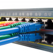 Multi Colored Network Cables Connected to Switch Isolated — Stock Photo