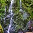 High Dynamic Range - HDR Waterfall in Forrest — Stock Photo