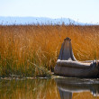 Reed boat on Lake Titicaca — Stock Photo