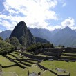 terraces of machu pichu with huayna picchu — Stock Photo