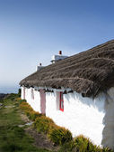 Old traditional white cottage with thatched roof — Stock Photo