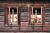 Two Traditional Opened Wodden Windows with Red Flowers — Foto de Stock