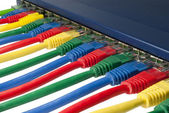 Multi colorido de cabos de rede ethernet conectados a um roteador — Foto Stock