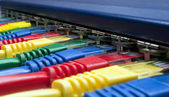 Rainbow color computer network plugs connected to a router or switch — Stock Photo
