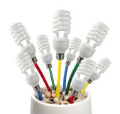 Light Bulbs attached to a colored cables growing in a pot — Stock Photo