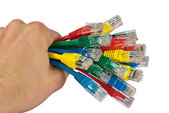 Hand Holding Bunch of Colored Network Cables Isolated — Stock Photo