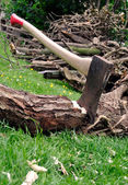 Lumberjack's Axe Stuck in a Tree Log on Grass — Stock Photo