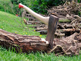 Wood Cutting - Axe Stuck in a Tree Log on Grass — Stock Photo
