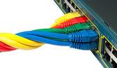 Trançado cabos de rede ethernet conectem a um hub, switch — Foto Stock