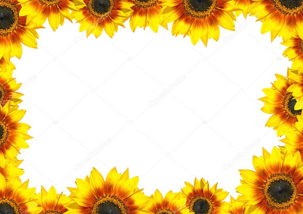 Sunflower Frame Sunflower Frame With Place For