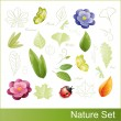 Set of nature elements — Stock Vector #7626991