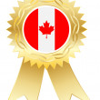 Canadian medal — Stock Vector