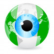Stock Vector: Eye of nigeria