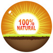 Natural 100 — Vector de stock #7529485