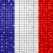 France flag — Stock Vector #7923654