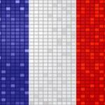 France flag — Stock Vector #7923654