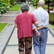A senior couple are walking — Stock Photo #7486781