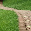 Royalty-Free Stock Photo: Winding pathway through a tranquil green lawn