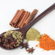 Various colorful spice — Stock Photo