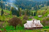 Old village Western Ukraine — Stock Photo