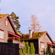 Scandinavian houses — Stock Photo