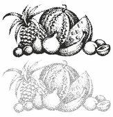 Still life watermelon — Stock Vector